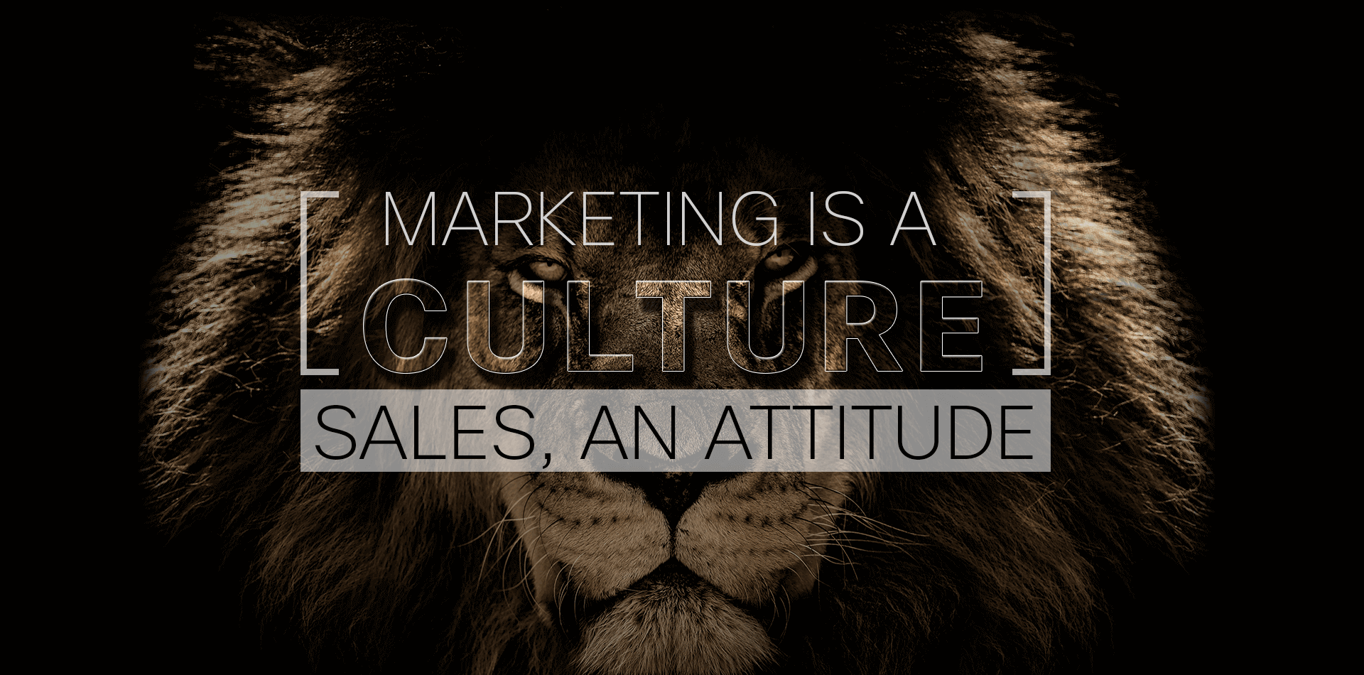 Marketing is a culture sales, an attitude.